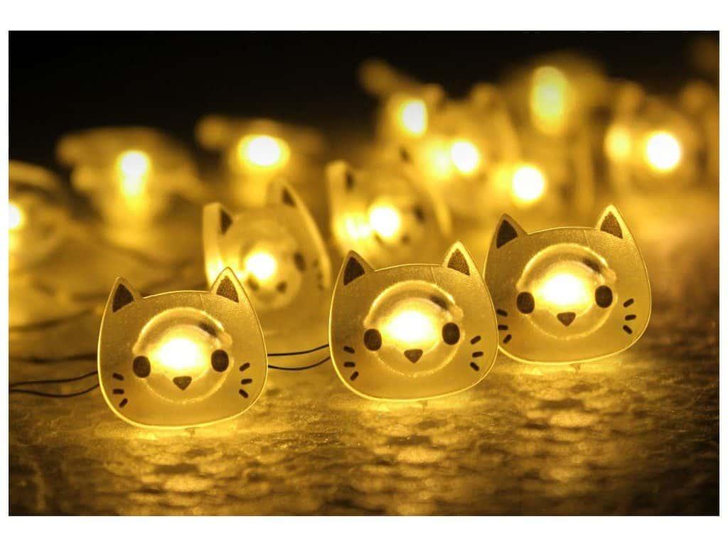 dárky pro milovníky koček, kočičí světýlka