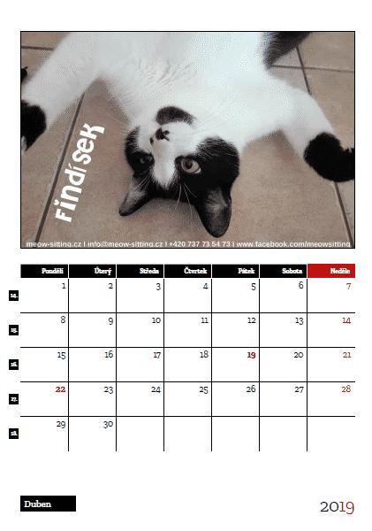 dárky pro milovníky koček, meow-sitting charitativní kalendář