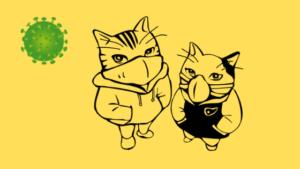 kočky v rouškách a koronavirus