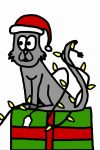 podpořte koupí kalendáře kočky bez domova